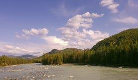 Sjö för bergAltai berg Arkivfoton