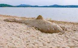 Sjö för hav för fisk för sandslottvalstaty Arkivbild