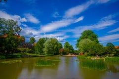 Sjö för Nackrosdammen liljadamm i centrum Royaltyfri Bild
