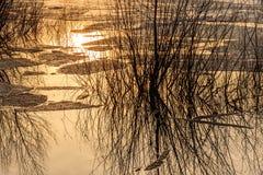 Sjö för reflexioner för isdrivavatten Royaltyfri Foto