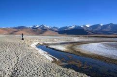 Sjö för salt vatten för Tso Kar i Ladakh, Indien royaltyfri bild