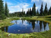 Sjö i ängarna i Revelstoke Kanada med spegelförfriskning royaltyfri bild