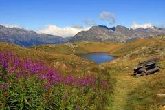 Sjö i Alpes mountaines Fotografering för Bildbyråer