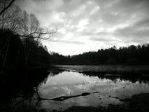 Sjö i den Göteborg botaniska trädgården fotografering för bildbyråer