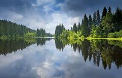 Sjö i en skog, Sumava arkivfoton