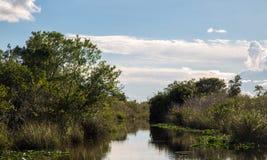 Sjö i Everglades Safari Park royaltyfria foton