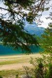 Sjö i Forestet Park Durmitor Montenegro arkivbild