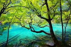 Sjö i jiuzhaigounationalparken, Sichuan, porslin arkivbild
