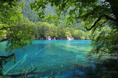 Sjö i jiuzhaigounationalparken, Sichuan, porslin royaltyfri bild