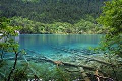Sjö i jiuzhaigounationalparken, Sichuan, porslin royaltyfria bilder