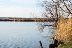 Sjö i naturreserv i hösten Arkivbilder