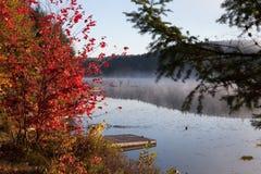 Sjö i nedgångskogen, Kanada fotografering för bildbyråer