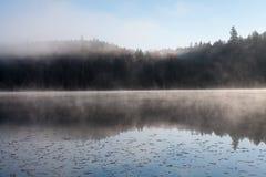 Sjö i nedgångskogen, Kanada arkivfoto