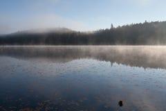 Sjö i nedgångskogen, Kanada royaltyfria foton