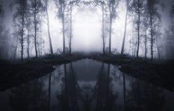 Sjö i overklig skog arkivbilder