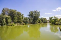 Sjö i parkera av Lutsk ukraine arkivbilder