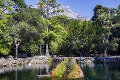 Sjö i parkera, den dekorativa springbrunnen och berget Royaltyfri Foto