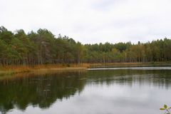 Sjö i rysk skog Fotografering för Bildbyråer