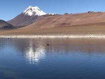 Sjö i `-San Pedro de Atacama `, Arkivfoto
