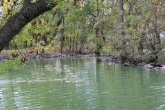 Sjö i skogen i höst Arkivfoton