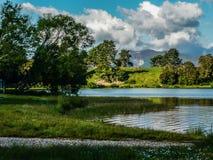 Sjö i solig eftermiddag - Nya Zeeland royaltyfria bilder