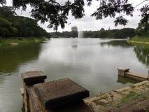 Sjö inom botanisk trädgård på Bangalore royaltyfria bilder