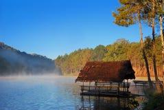 Sjö, liten husbåt och pinjeskog royaltyfri foto