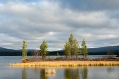 Sjö Luirojarvi i den Taiga skogen Arkivbild