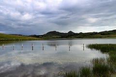 Sjö med berg i avståndet Arkivbild
