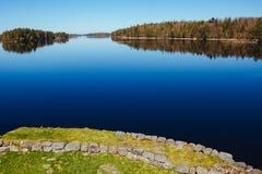 Sjö med en gräs- strand och en avlägsen skog fotografering för bildbyråer