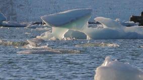 Is- sjö med fåglar stock video