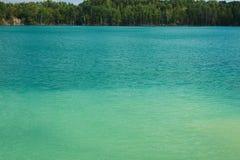 Sjö med grönt vatten Arkivfoto