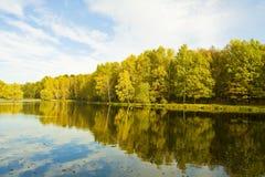 Sjö med skogen i höst Royaltyfri Bild