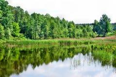 Sjö med skogreflexion royaltyfri foto