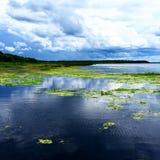 Sjö Monroe, Deltona Florida Arkivbilder