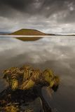 Sjö Myvatn i nordvästliga Island Arkivbilder