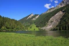 Sjö Obersee, skog och berg Royaltyfri Fotografi