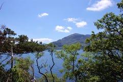 Sjö och berg av den Killarney nationalparken, Irland royaltyfri fotografi