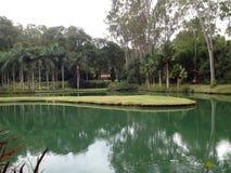 Sjö och botanisk trädgård på det Inhotim institutet, i Brumadinho, MG - Brasilien Royaltyfri Fotografi