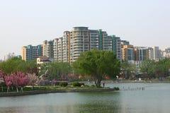 Sjö och byggnader royaltyfria foton