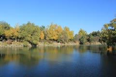 Sjö och färgrika träd Arkivbilder
