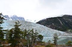 Sjö och glaciar i Chile Royaltyfria Foton