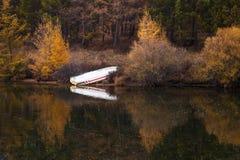 Sjö och gulingträd och fartyg Arkivfoto