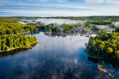 Sjö och skog på en dimmig morgon royaltyfria foton