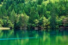 Sjö och träd i Jiuzhaigou Valley, Sichuan, Kina arkivfoton