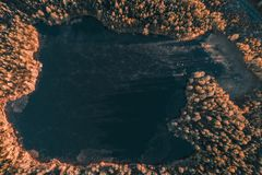 Sjö på hösten - högt arial royaltyfri fotografi