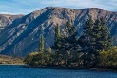 Sjö Pearson/Moana Rua djurlivfristad som lokaliseras i Craigieburn Forest Park i den Canterbury regionen, södra ö av Nya Zeeland Fotografering för Bildbyråer