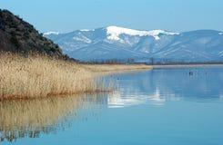 Sjö Prespa, Makedonien Fotografering för Bildbyråer