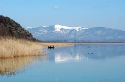 Sjö Prespa, Makedonien arkivbild