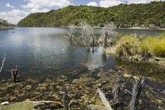 Sjö Rotomahana Nya Zeeland Arkivbild